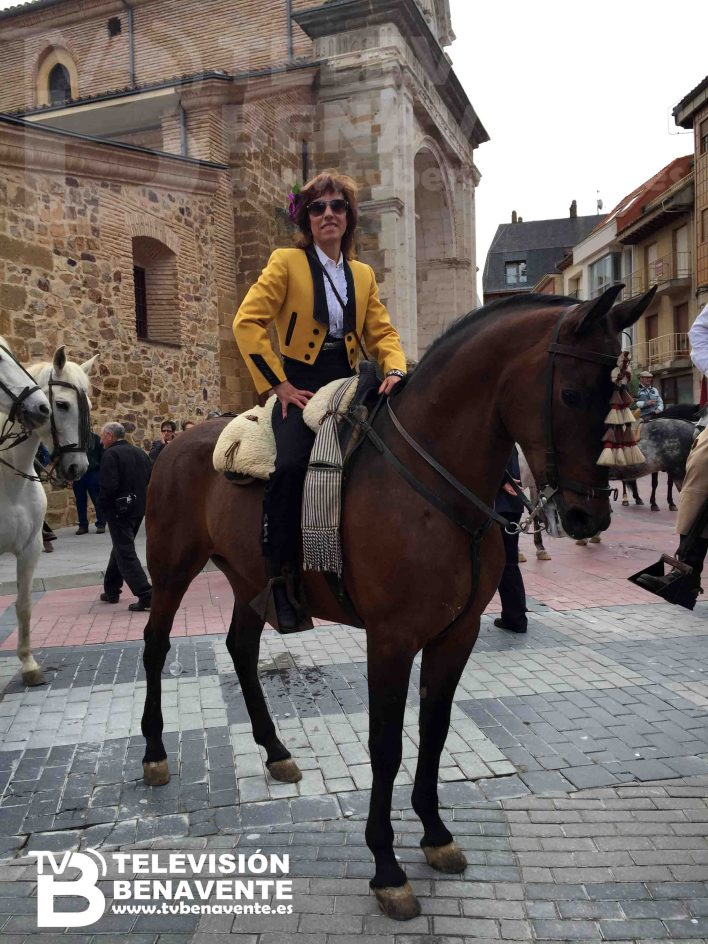 dia del caballo 2015 Benavente 20