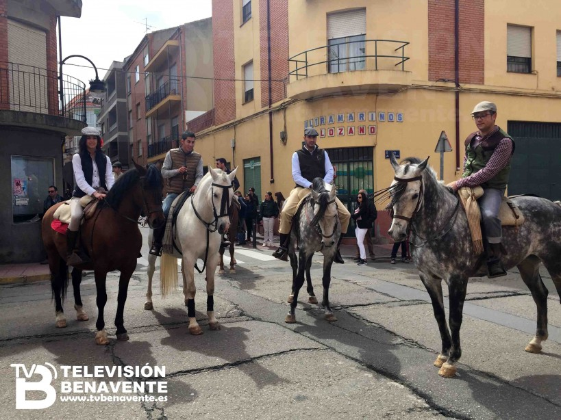 dia del caballo 2015 Benavente 21