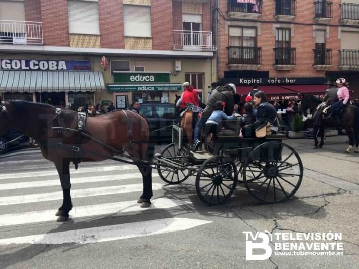 dia del caballo 2015 Benavente 24