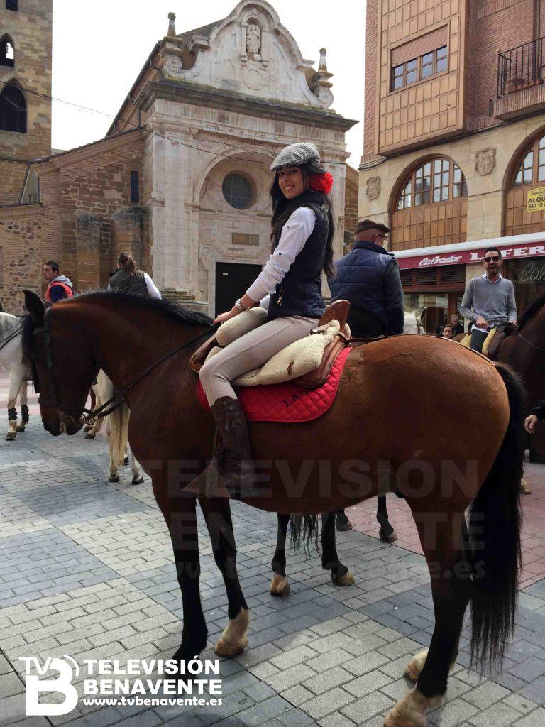 dia del caballo 2015 Benavente 5