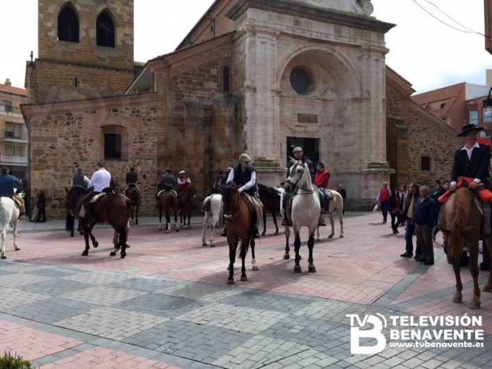 dia del caballo 2015 Benavente 7