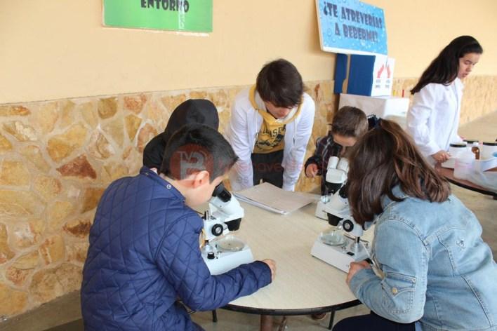 Alumnos de 2º Primaria observando macroinvertebrados