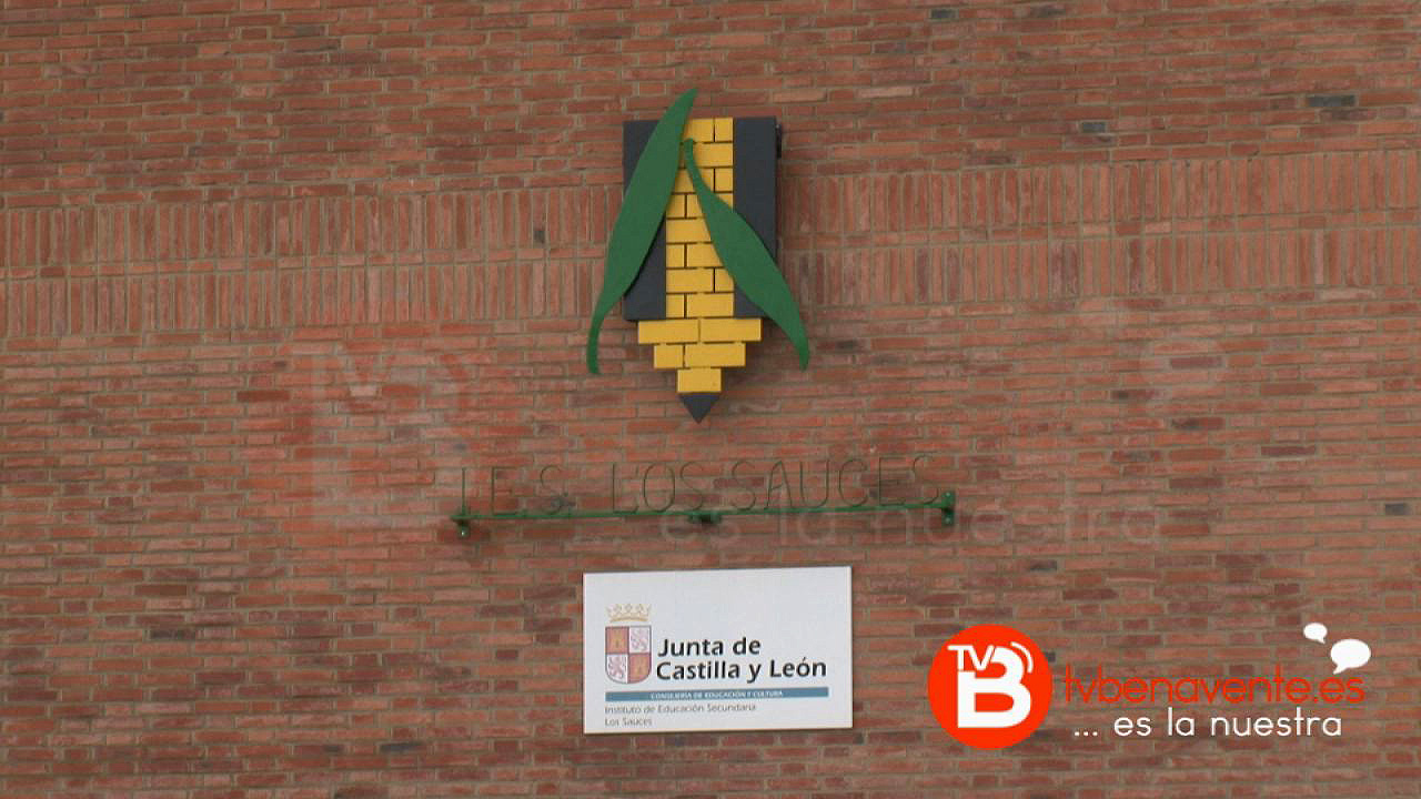 El Instituto Los Sauces De Benavente Ofertará Un Nuevo Curso