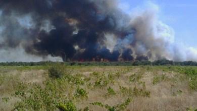 Photo of Un incendio iniciado junto a la A-52 mantiene en vilo a San Juanico el Nuevo