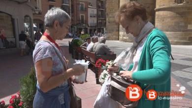 Photo of Cuestación anual de la asociación AFA Benavente y comarca