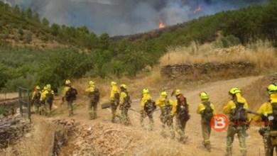Photo of Izquierda Unida presentará una moción para reconocer a las Brigadas de Refuerzo de Incendios Forestales