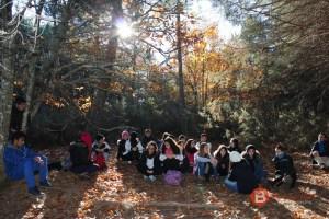 Excursión Sierra Culebra entre brezos y con pinares al fondo