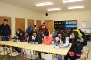 Proyecto microorganismos del Colegio Virgen de la Vega