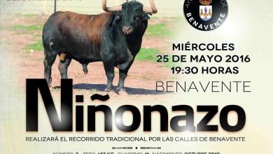 """Photo of """"Niñonazo"""" TORO ENMAROMADO 2016"""