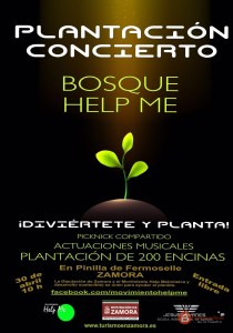 plantacion concierto bosque help me jesus yanes zamora