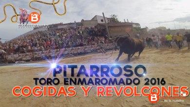 Photo of VIDEO: Cogidas y Revolcones de Pitarroso, Toro Enmaromado 2016 de Benavente