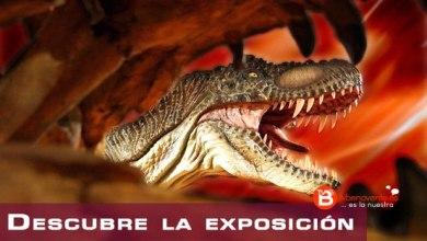 Photo of CONCURSO ENTRADAS – DINO EXPO XXL 2016