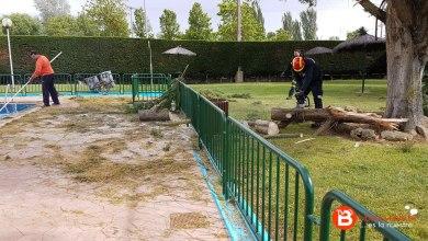 Photo of Una gran rama se resquebraja y cae en el recinto de las piscinas municipales sin ocasionar daños.