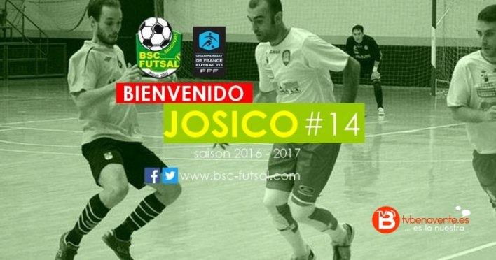 JOSICO-2-768x403