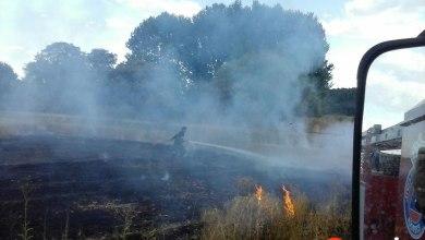Photo of Sofocado un incendio en una finca de cereal en Burganes de Valverde