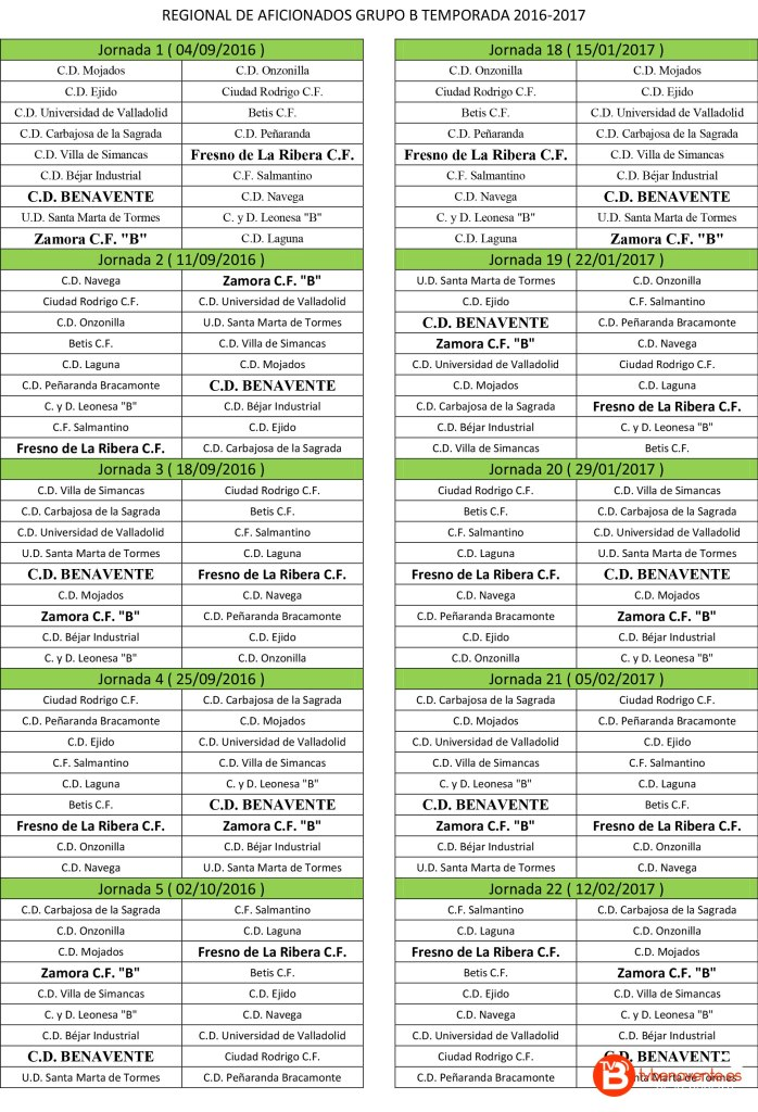 temporada 2016-2017 c.d benavente