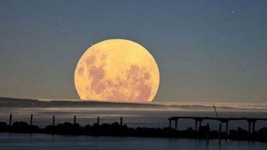 Photo of El 14 de noviembre veremos la Superluna más grande en 70 años