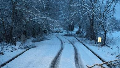 Photo of GALERÍA: La nieve ha llegado a Sanabria dificultando el tránsito por sus carreteras