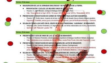 Photo of XII Jornadas Enológicas y de productos de la tierra en Benavente