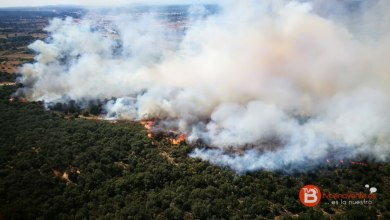 Photo of Un gran incendio forestal arrasa hectáreas en Vega de Tera