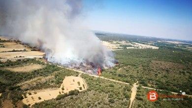 Photo of Cuatro incendios en dos días, todos provocados por la mano del hombre