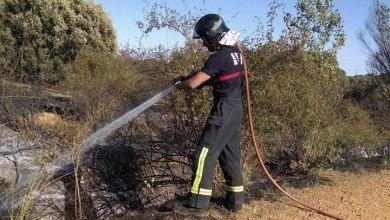 Photo of Incendio de cereal y monte entre Quiruelas y Morales del Rey