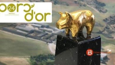 Photo of Una granja de cerdos de Quiruelas nominada en los Premios Porc d'Or