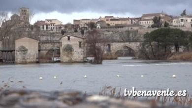 Photo of Crecida del Río Duero a su paso por Zamora por el deshielo