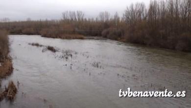 Photo of Estado de los ríos de Benavente y su comarca tras las lluvias