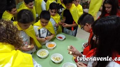 Photo of Taller de frutas y verduras un tanto especial en el CEIP El Pinar