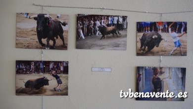 "Photo of Exposición ""La Esencia del Festejo Popular"" en Castrogonzalo"