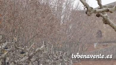 Photo of La nieve se adelanta a las previsiones en Benavente