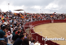 Photo of Concurso de Cortes celebrado en Benavente