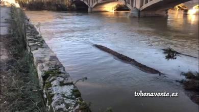 Photo of La crecida del río Esla se lleva los diques de contención del puente de Castrogonzalo