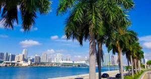 O melhor de Miami por Marisa Gordon