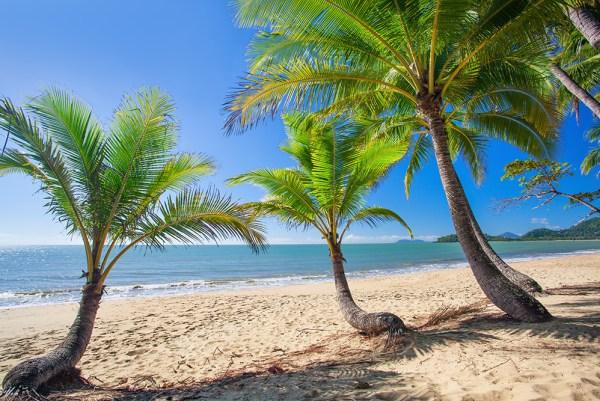 Tv Catia Fonseca Lua de mel: Os 8 destinos mais românticos - Palm Cove, Australia