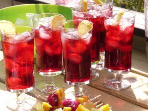 Chá gelado de hibisco com abacaxi e especiarias por Malu Lobo