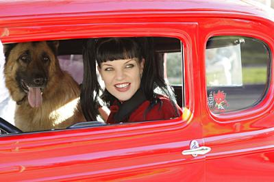 "NCIS - Pauley Perrette as Abby in ""Dog Tags"""