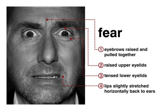 Tim Roth (Dr. Cal Lightman) portrays fear in Lie To Me