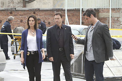 CSI: NY (CBS) Do Not Pass Go
