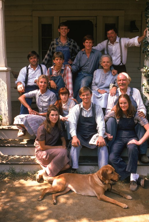 a decade of the waltons