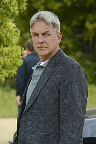 NCIS Mark Harmon Till Death Do Us Part