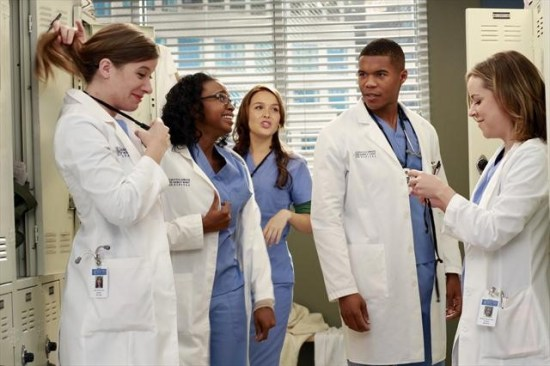 Grey's Anatomy Season 9 Episode 8 Love Turns You Upside Down (6)