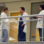 Grey's Anatomy Season 10 Episode 14 You've Got To Hide Your Love Away (10)
