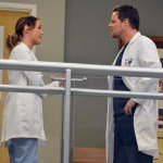 Grey's Anatomy Season 10 Episode 14 You've Got To Hide Your Love Away (8)