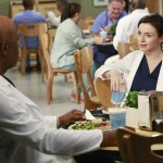 Grey's Anatomy Season 11 Episode 2 Puzzle With A Piece Missing (5)