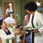 Grey's Anatomy Season 11 Episode 2 Puzzle With A Piece Missing (4)