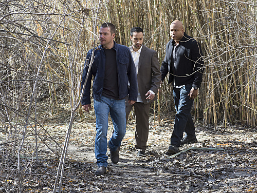 NCIS Los Angeles Forest For The Trees Season 6 Episode 15 04