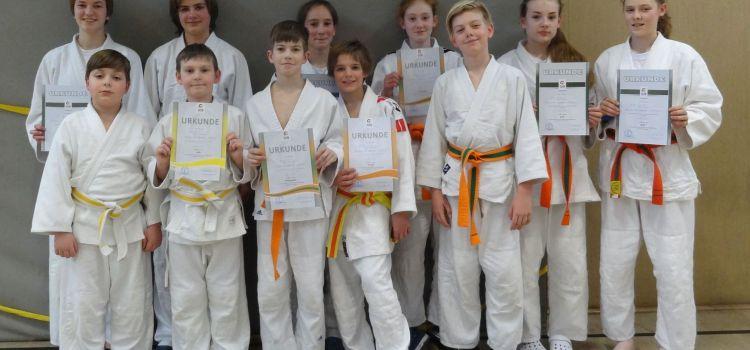 Judo: Der Frühling kommt, es wird immer grüner