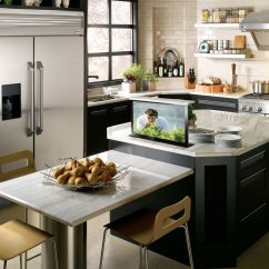 Small Kitchen Tv Brushed Nickel Faucet With Sprayer Cabinet Lift Creates More Storage Nexus 21 Hidden In Island